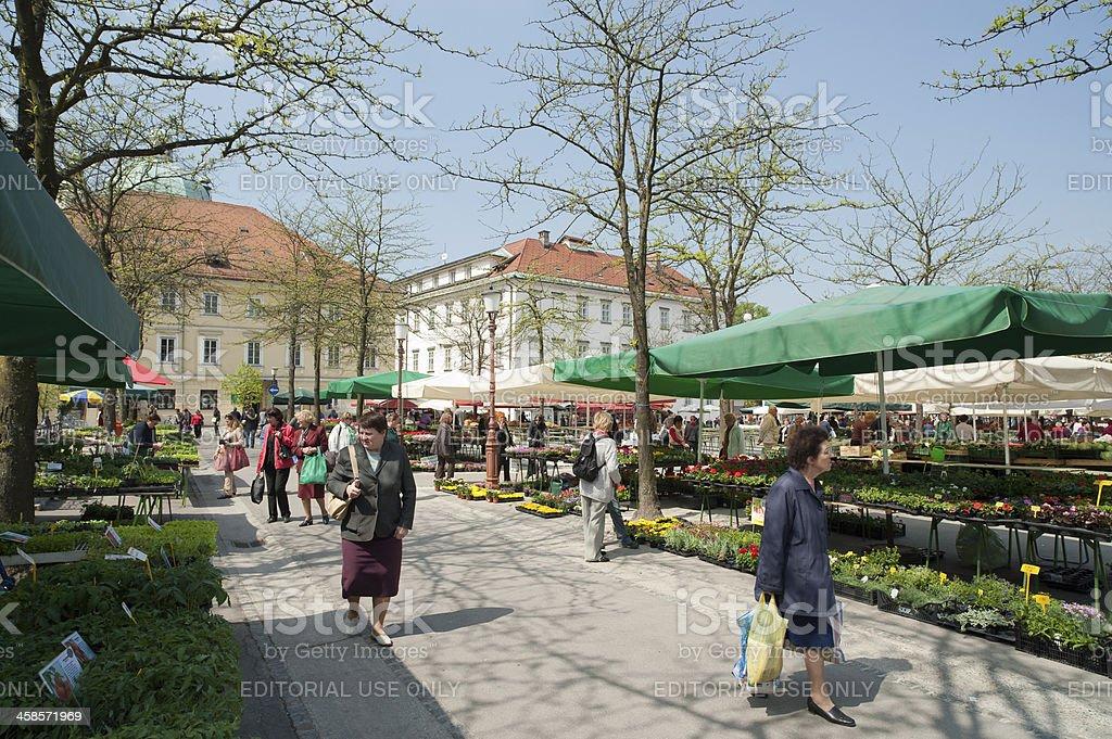 Market place pogacarjev trg Ljubljana Slovenia stock photo