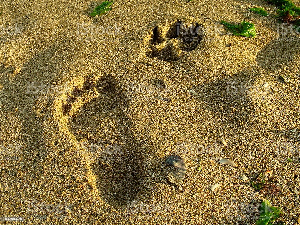 Marks on the sand royalty-free stock photo