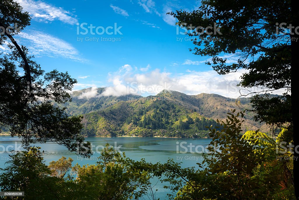 Marlborough Sounds framed view from Queen Charlotte Track stock photo