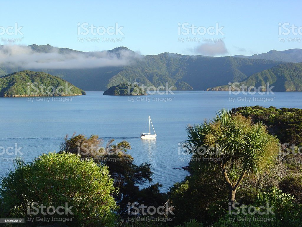 Marlborough sounds morning with boat royalty-free stock photo