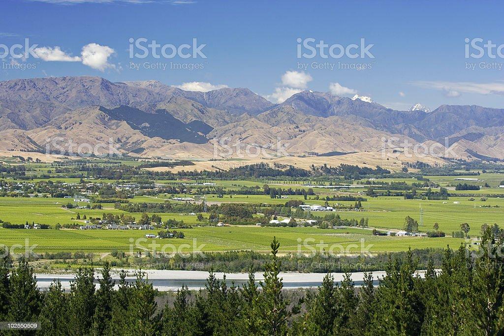 Marlborough Wine Trail royalty-free stock photo