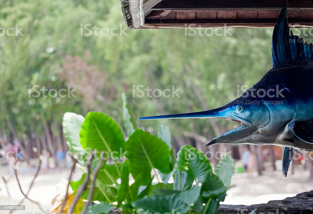 Marlin Fishing in the Tropics stock photo