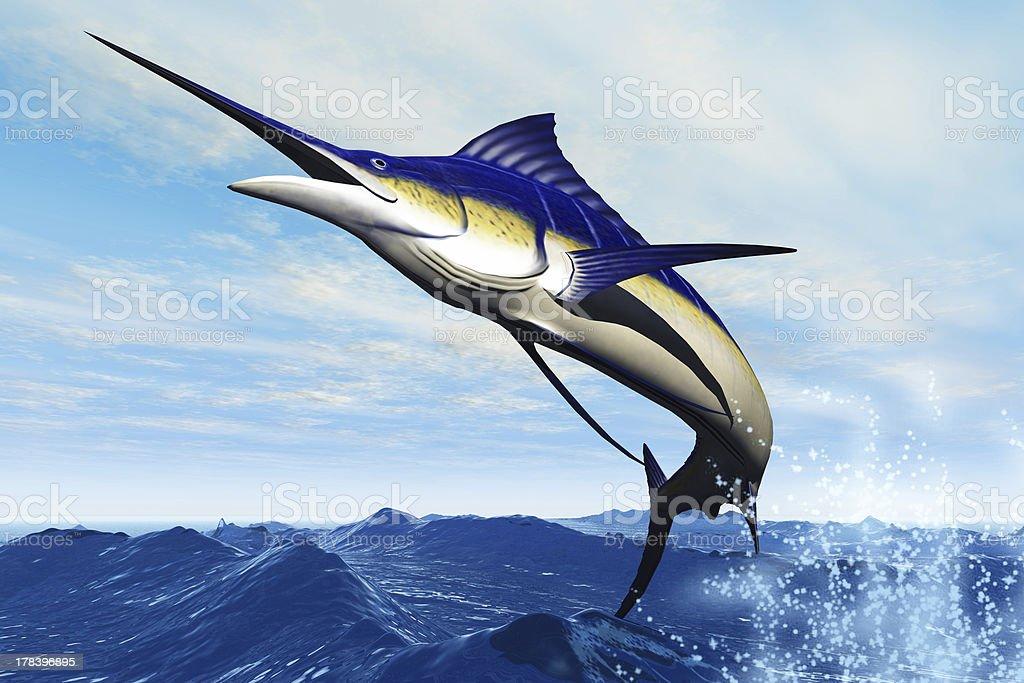 Marlin Jump stock photo