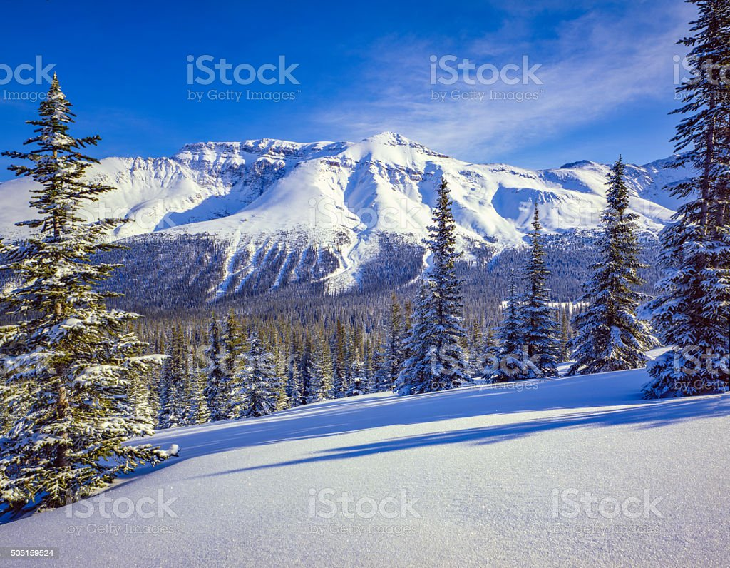 MT. Marmot in Banff National Park, Alberta Canada stock photo