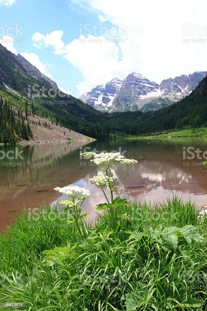 Maroon Bells in the Summertime stock photo