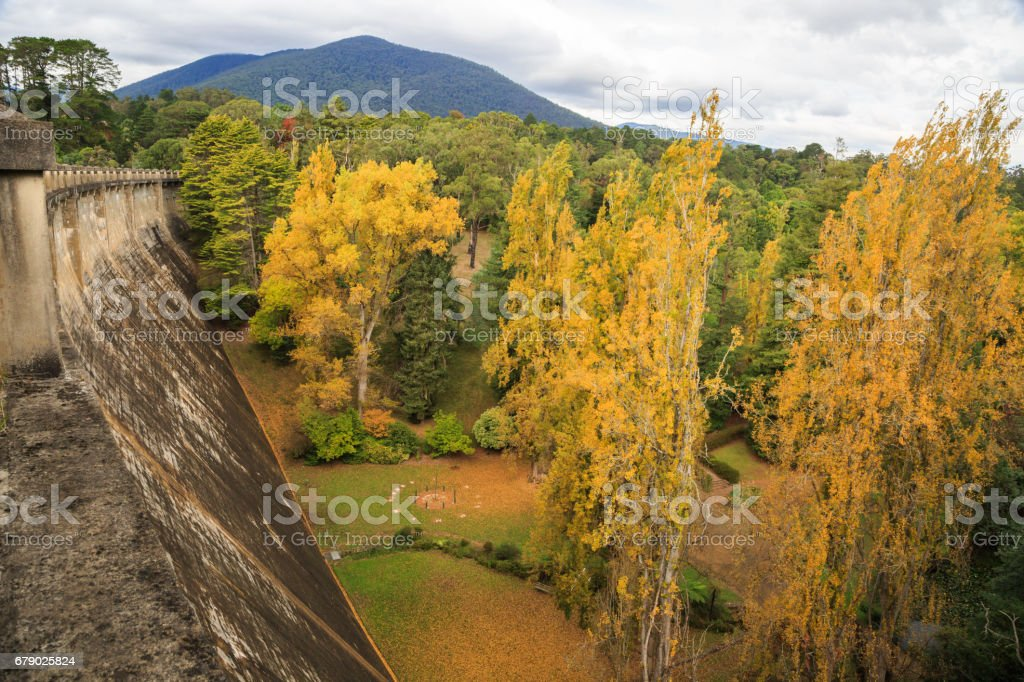 Maroondah Dam and Park, Healesville, Victoria, Australia stock photo