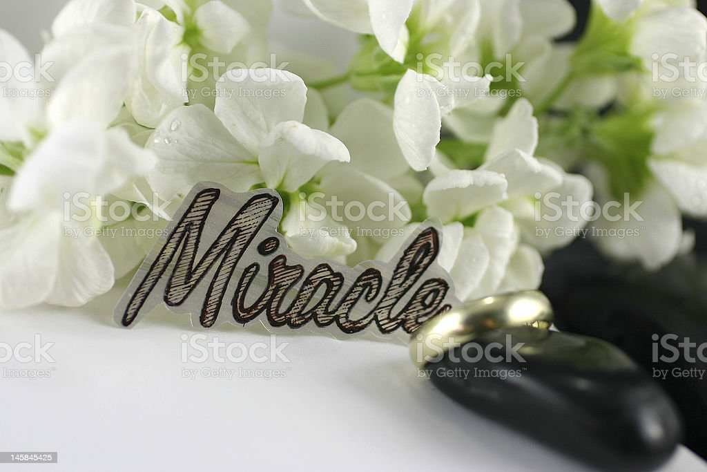 marriage scene royalty-free stock photo