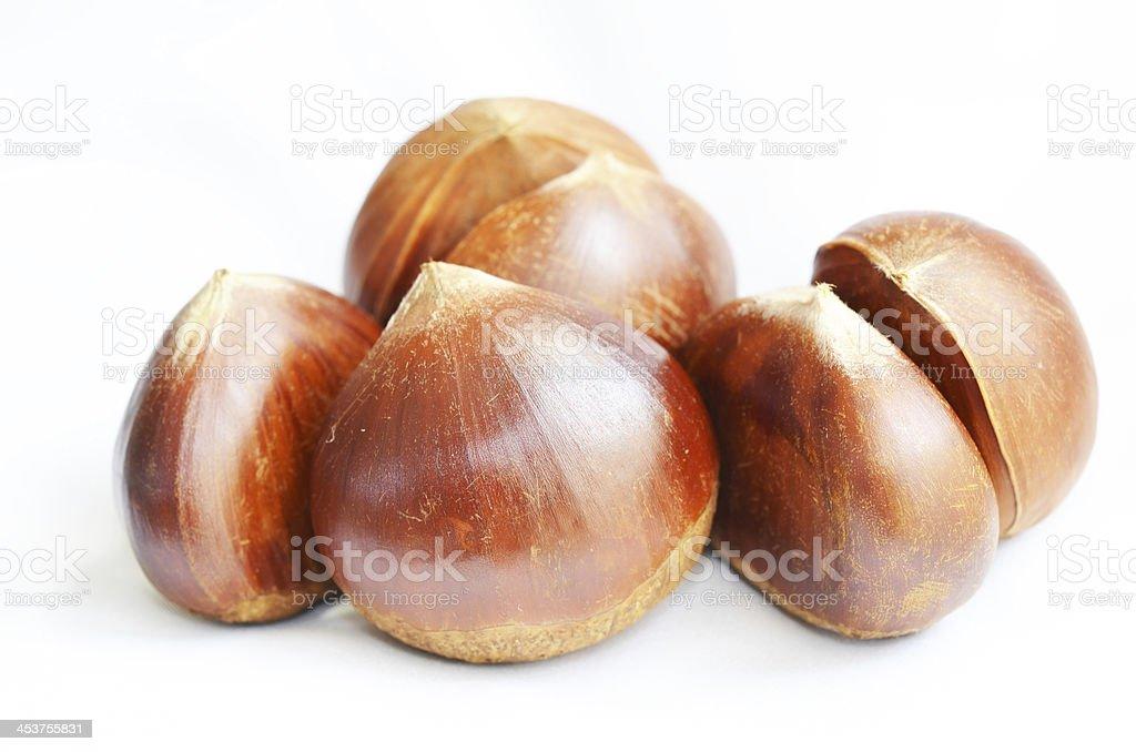 marron stock photo