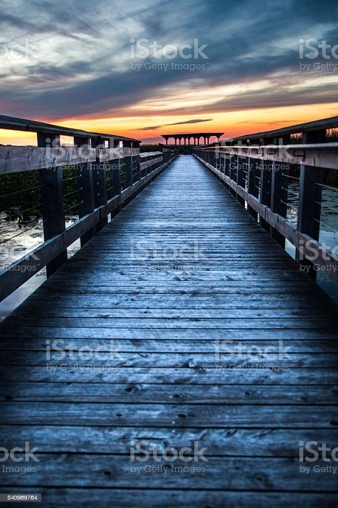 Marsh Boardwalk at Point Pelee National Park stock photo