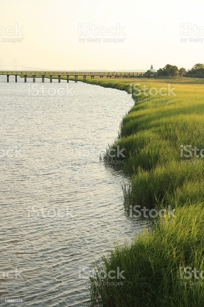 Marshes Edge royalty-free stock photo