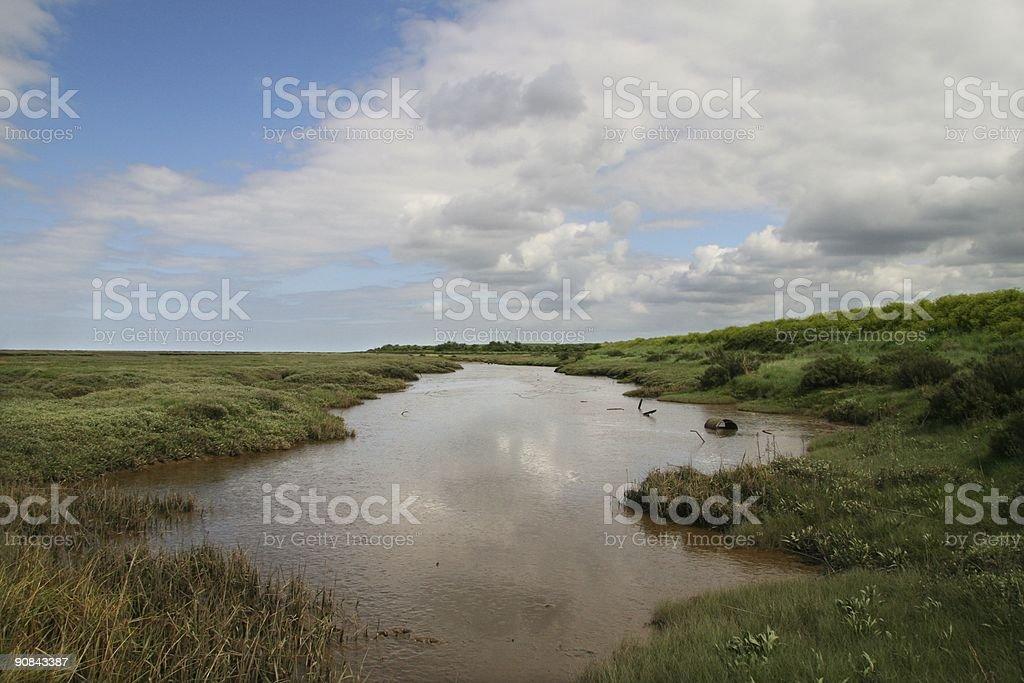Marshes stock photo