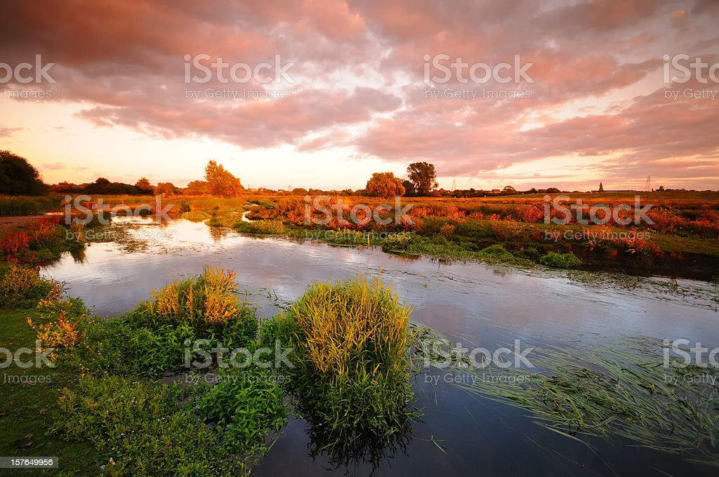 Marshland Sunset royalty-free stock photo