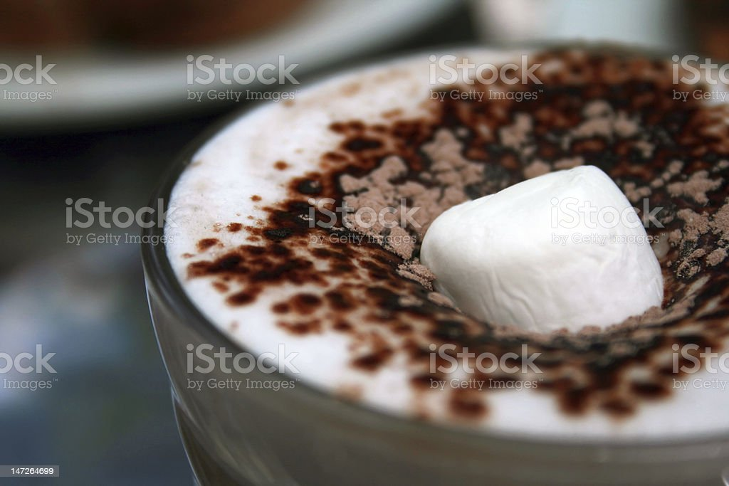 Marshmallow in Hot Chocolate royalty-free stock photo