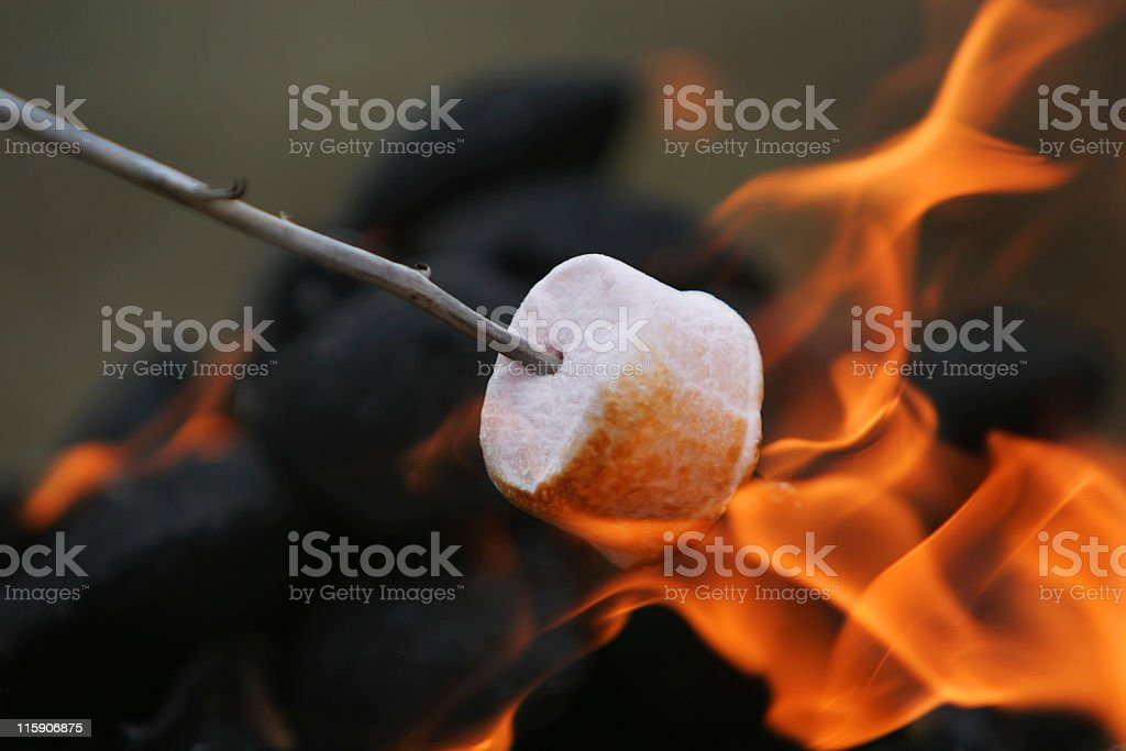 Marshmallow on a stick in orange flames stock photo