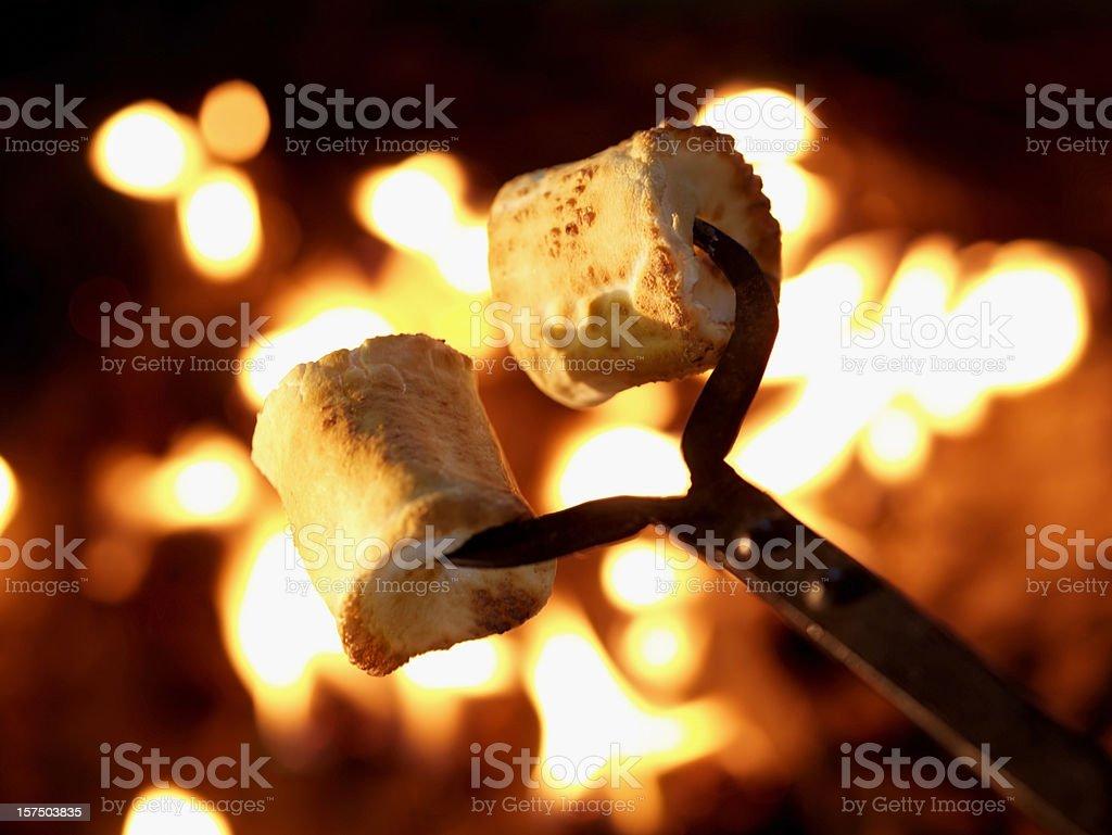 Marshmallows at a Campfire stock photo