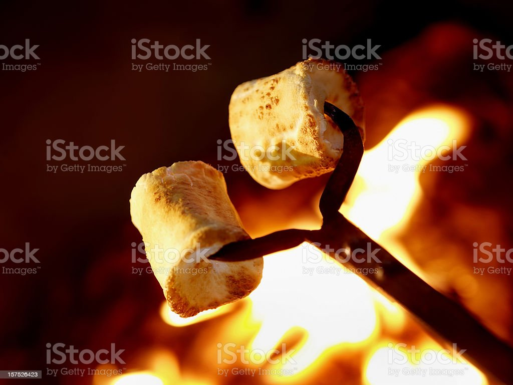 Marshmallows at the camp fire royalty-free stock photo