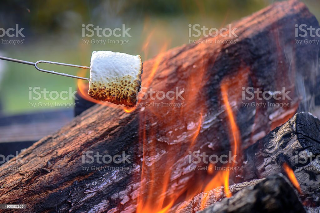 Marshmallows at the camp fire stock photo