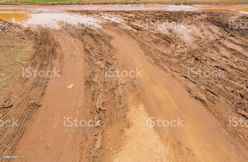 Marshy road royalty-free stock photo