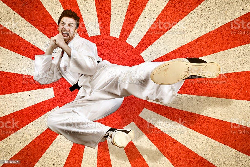 Martial art flying kick stock photo