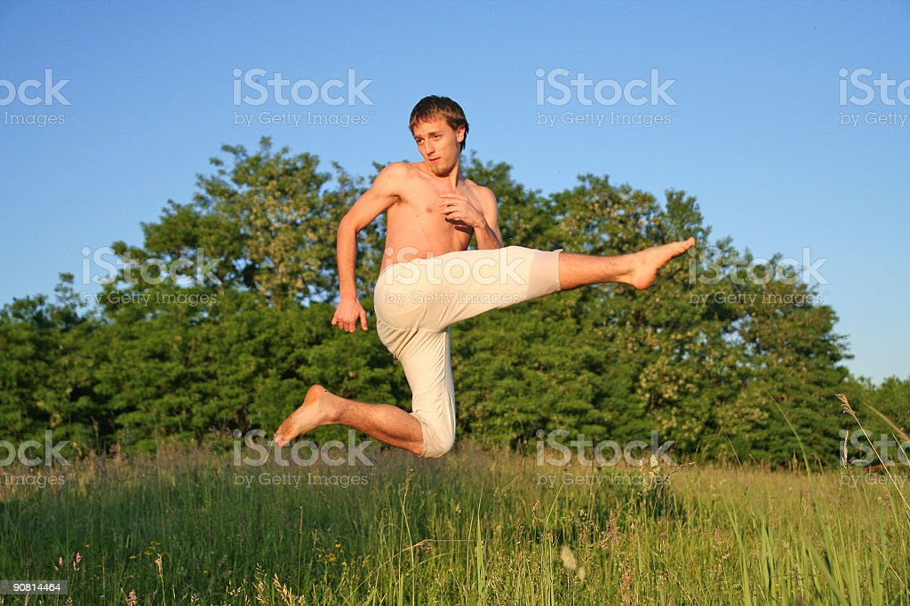 martial art royalty-free stock photo