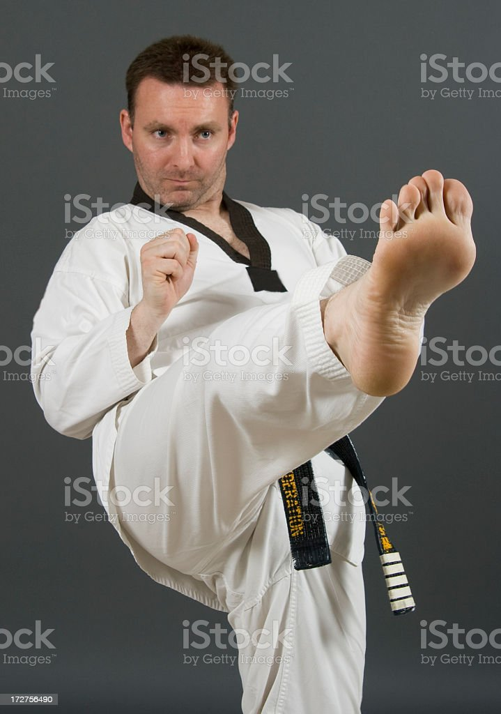Martial Artist Kicking royalty-free stock photo