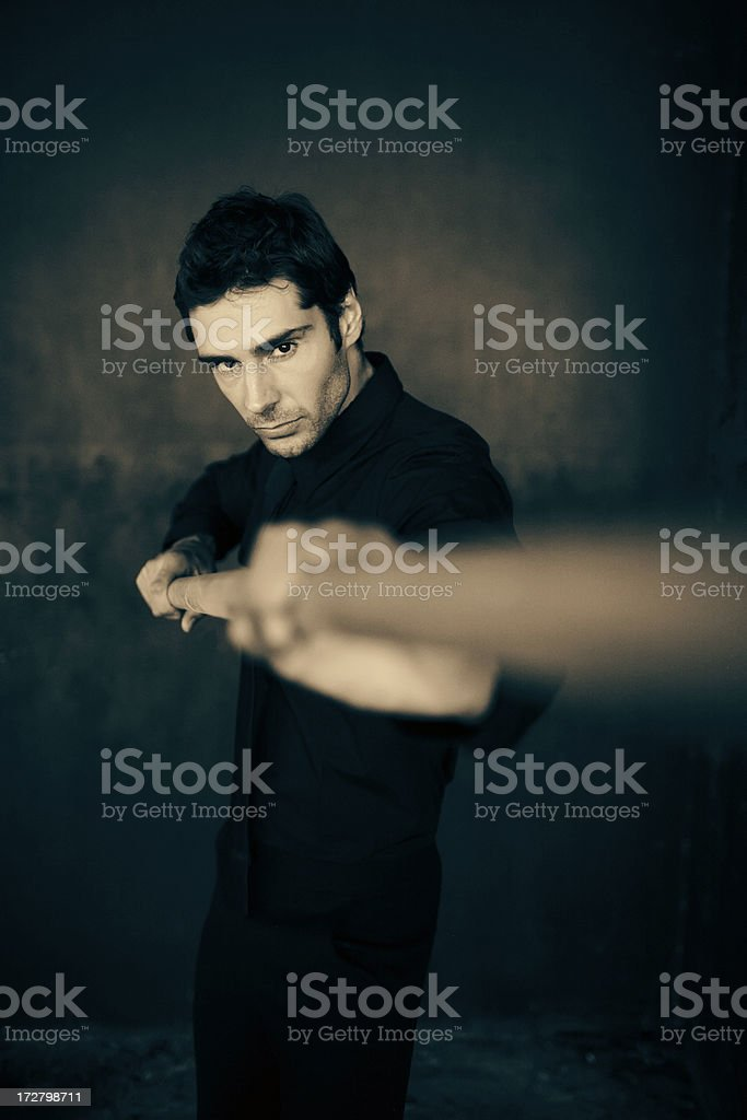 martial artist royalty-free stock photo