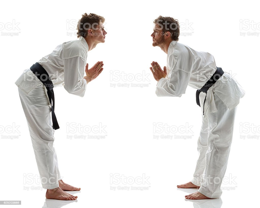 Martial Artists bowing stock photo