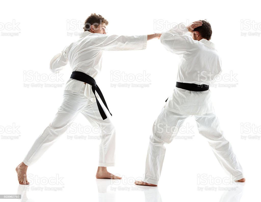 Martial Artists fighting stock photo