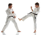 Martial Artists fighting