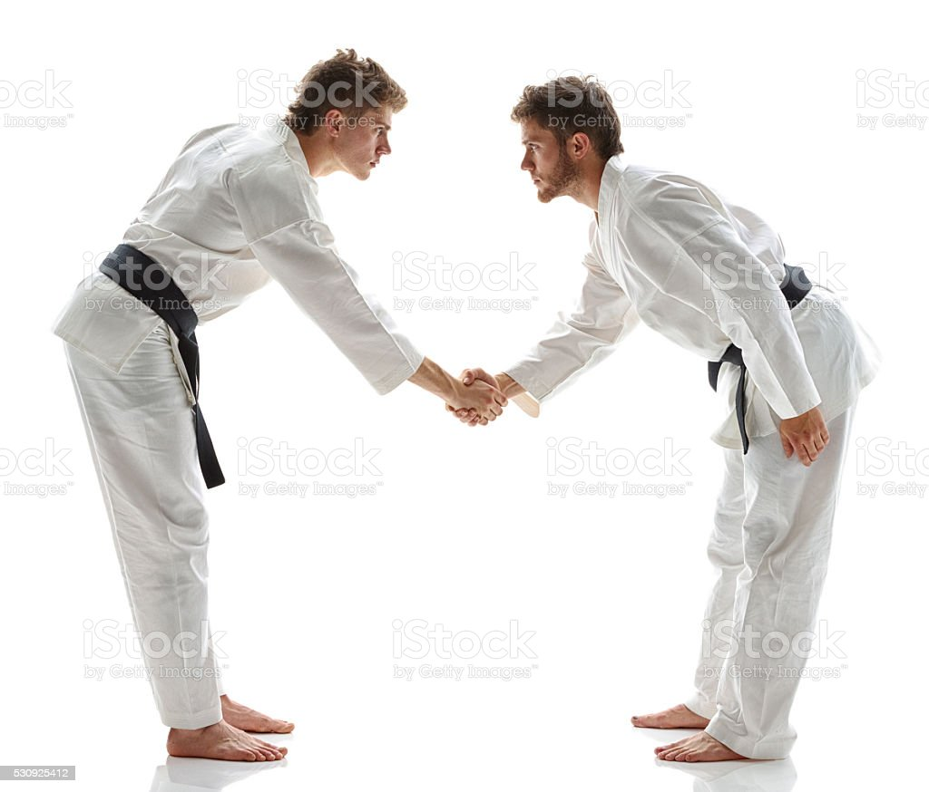 Martial Artists giving hand shake stock photo