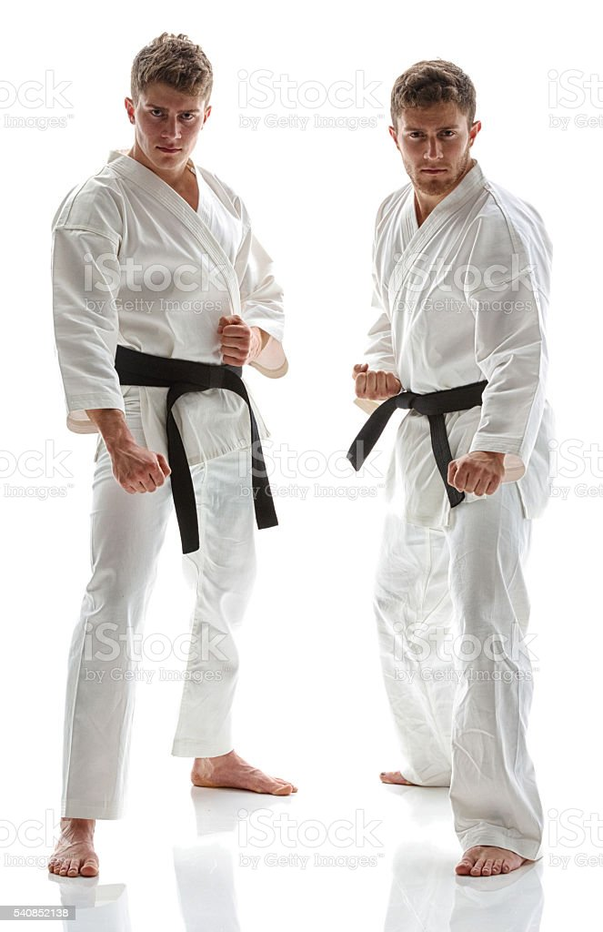 Martial Artists standing and in fighting stance stock photo