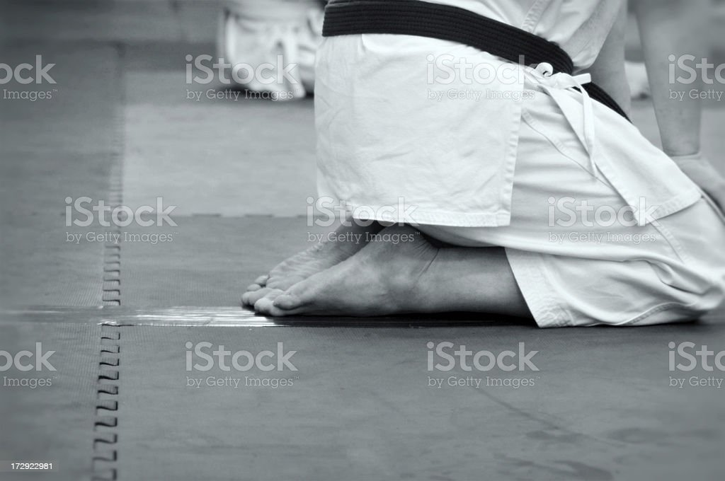 Martial Arts Abstract royalty-free stock photo