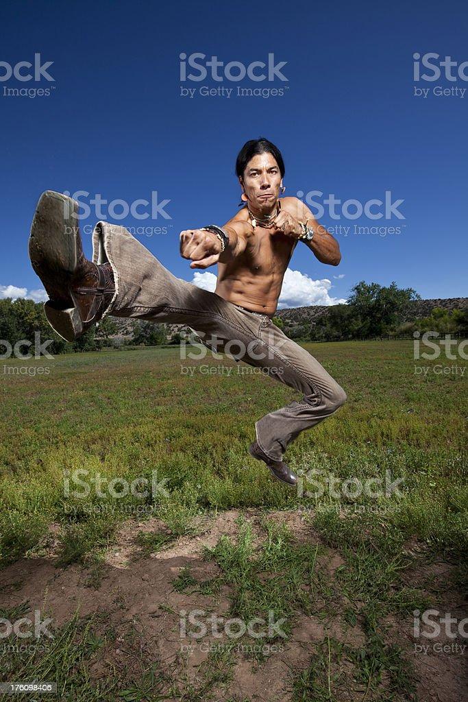 Martial arts Action kick royalty-free stock photo