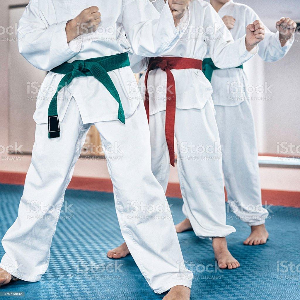 Martial Arts Children stock photo