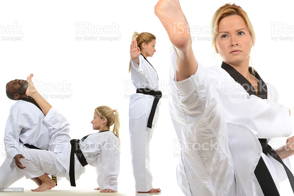 Martial Arts Dynamics stock photo