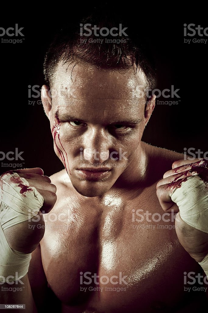 Martial Arts Fighter MMA royalty-free stock photo