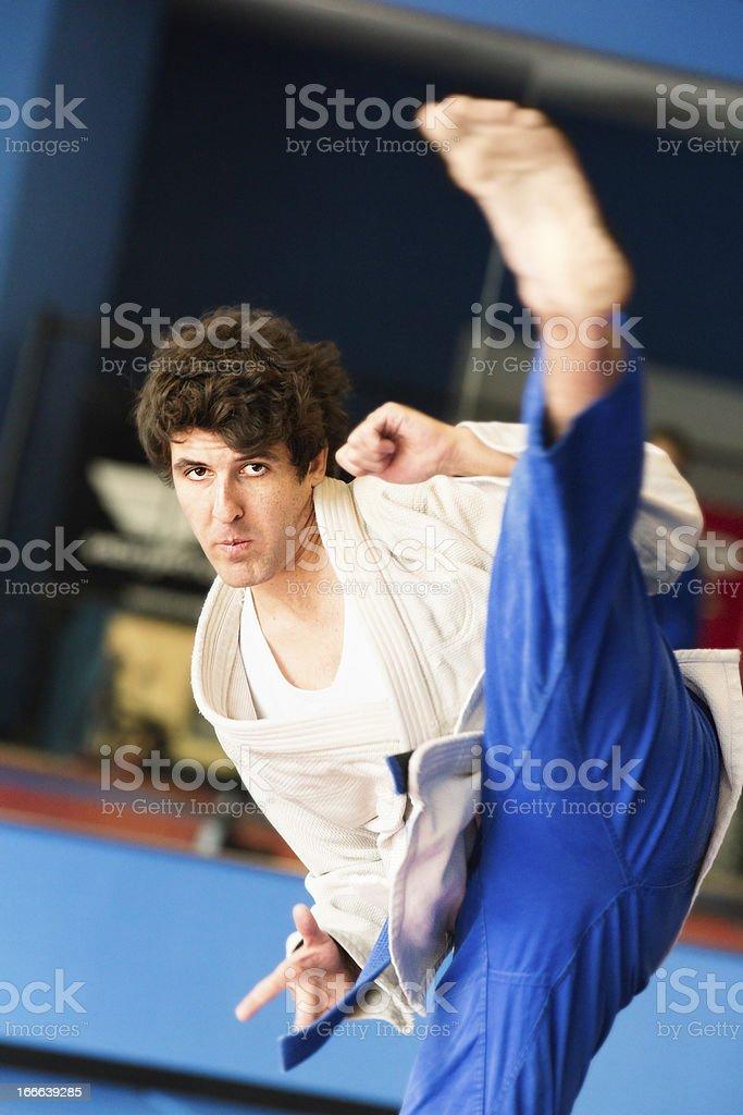 Martial Arts Kick royalty-free stock photo