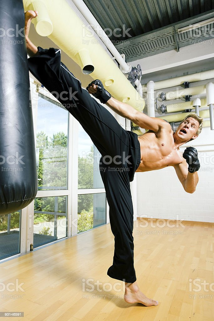 Martial Arts Kick royalty-free stock photo