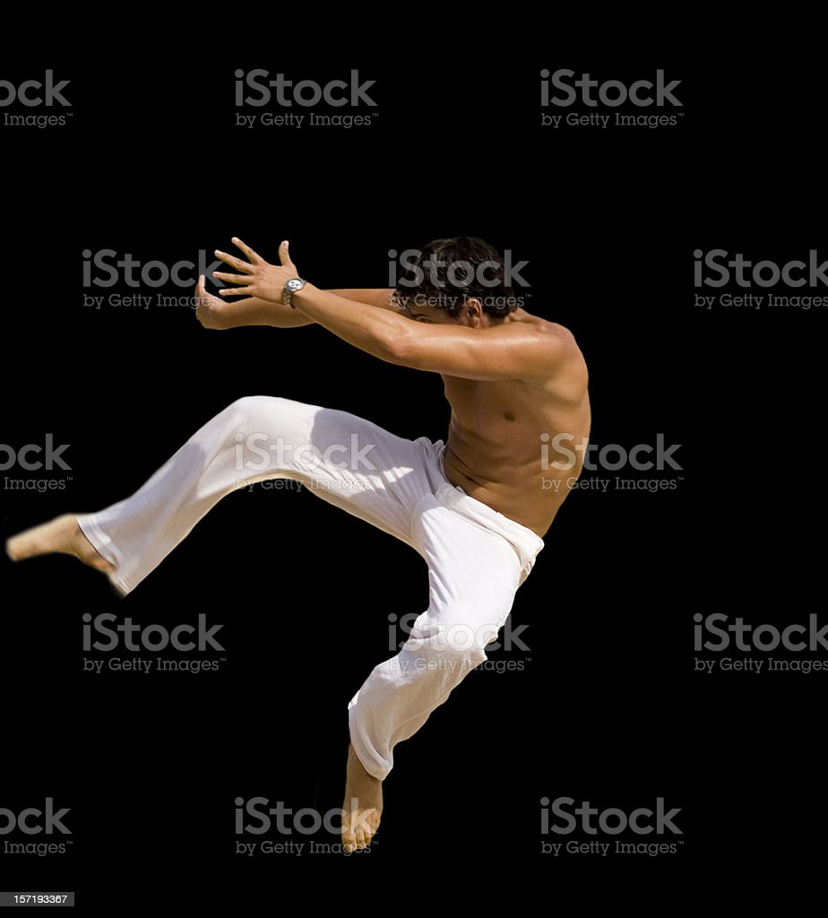 martial arts royalty-free stock photo