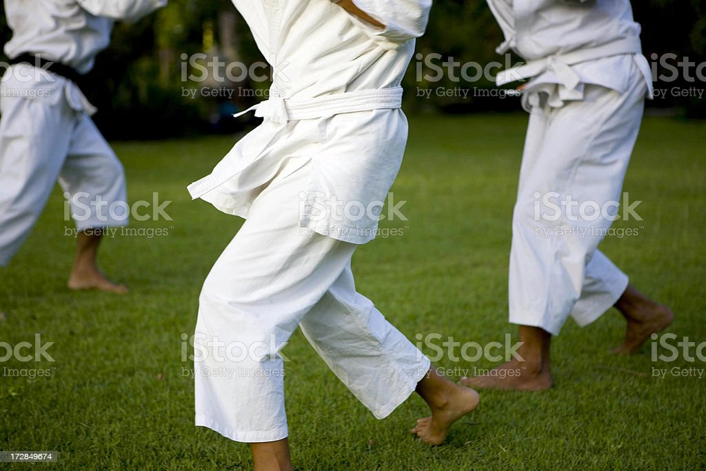 Martial Arts royalty-free stock photo