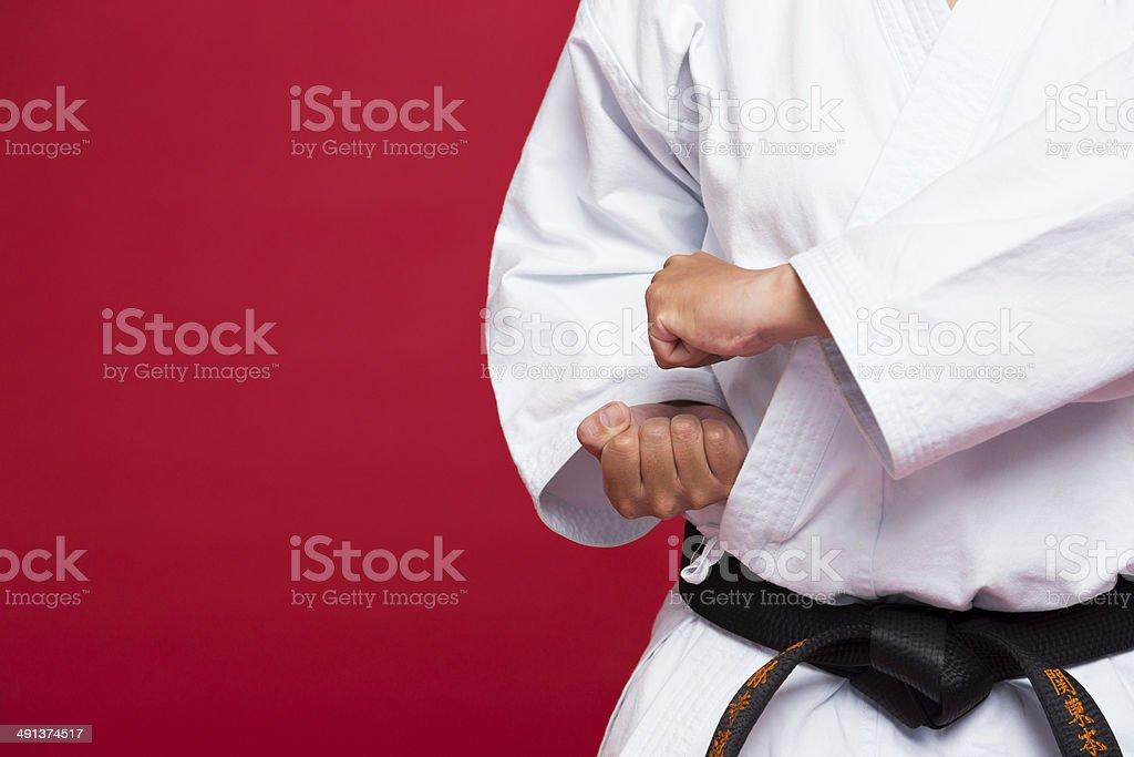 Martial arts stock photo