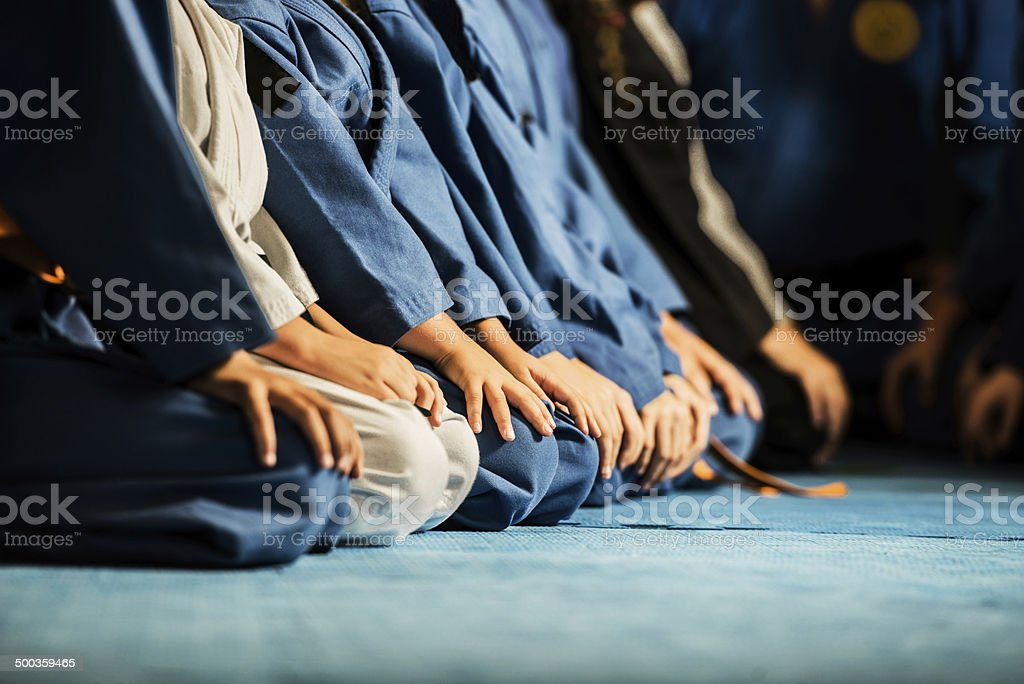 Martial arts. stock photo