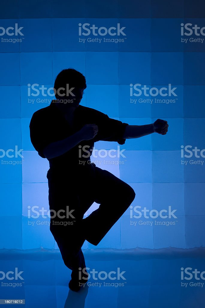 Martial Arts Silhouette royalty-free stock photo
