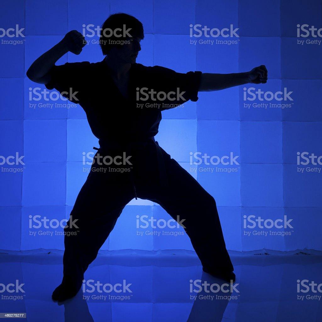 Martial Arts Silhouette stock photo