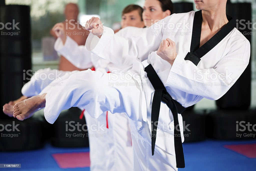 Martial Arts sport training in gym royalty-free stock photo