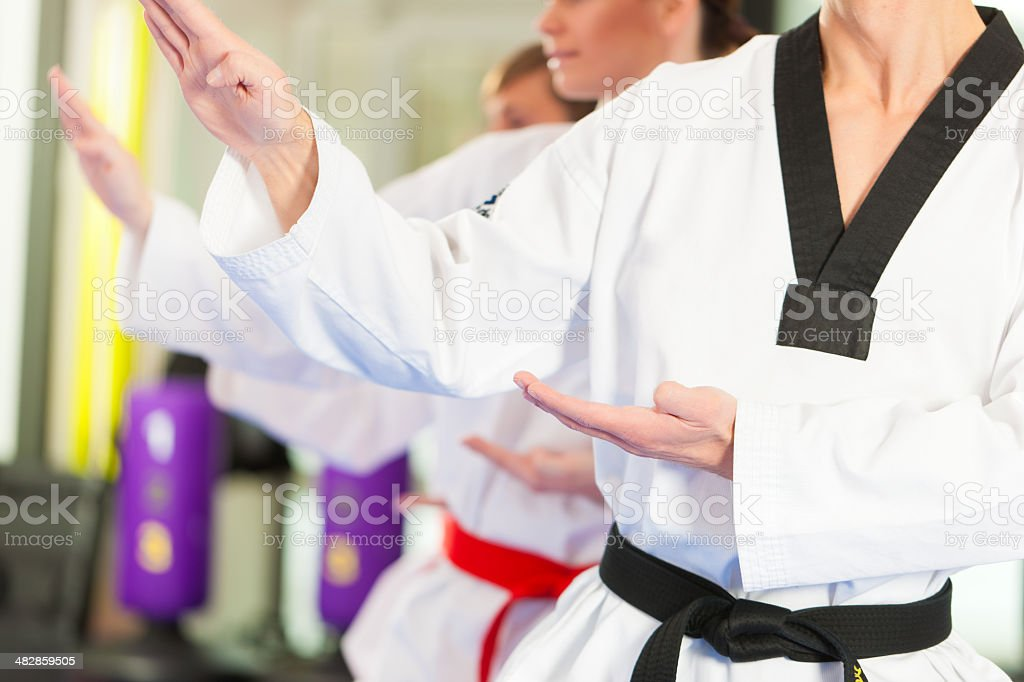 Martial Arts sport training in gym stock photo