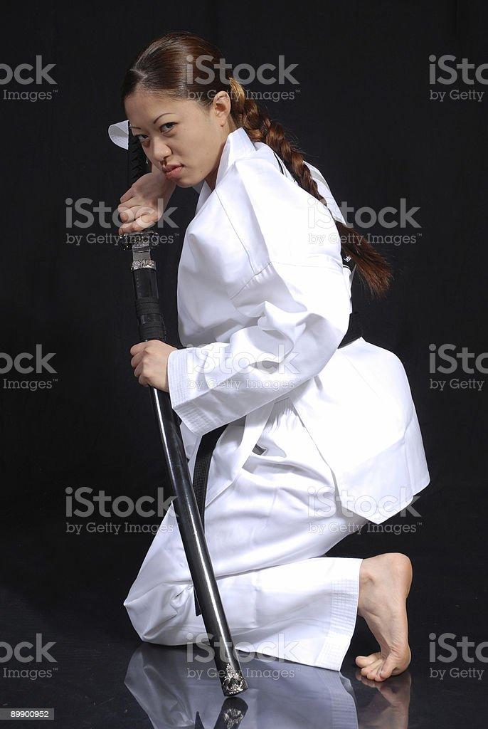 Martial arts way stock photo