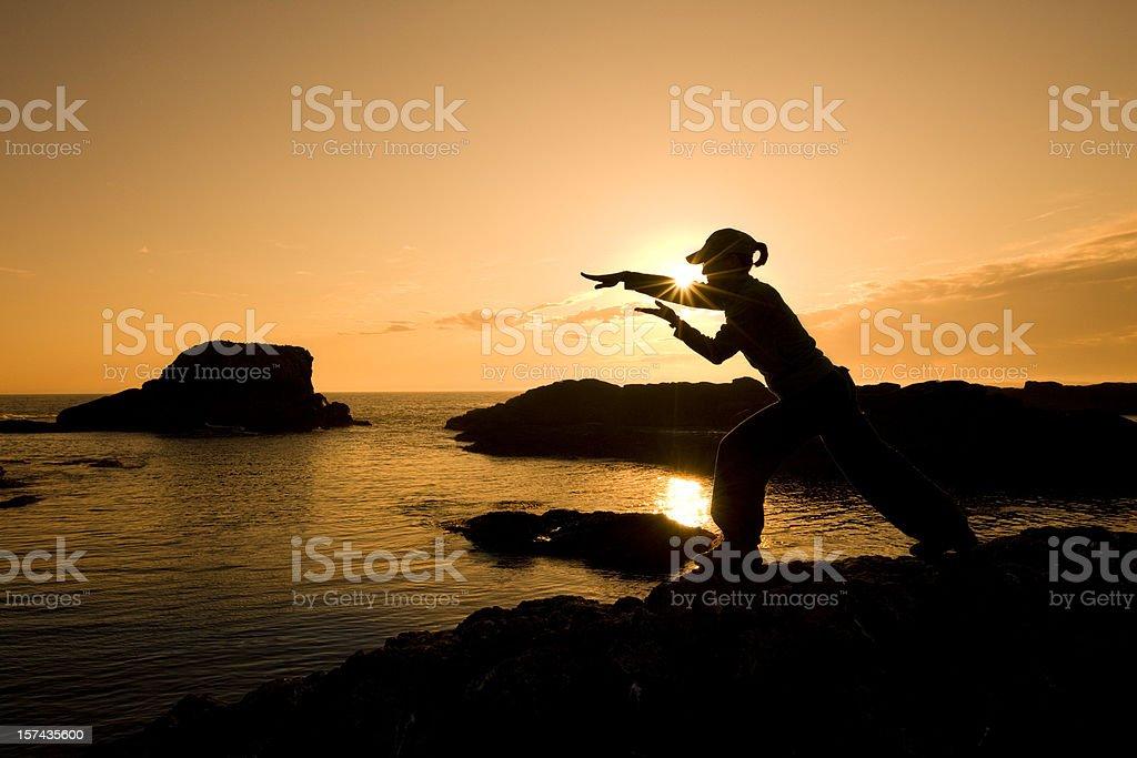 Martial Arts Woman Silhouette stock photo