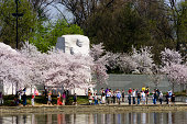Martin Luther King, Jr. Memorial in spring