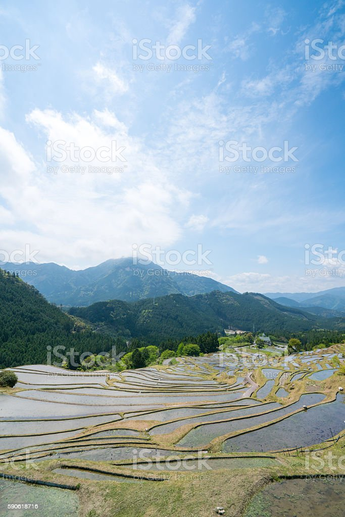 Maruyama rice terrace,mie,tourism of japan stock photo